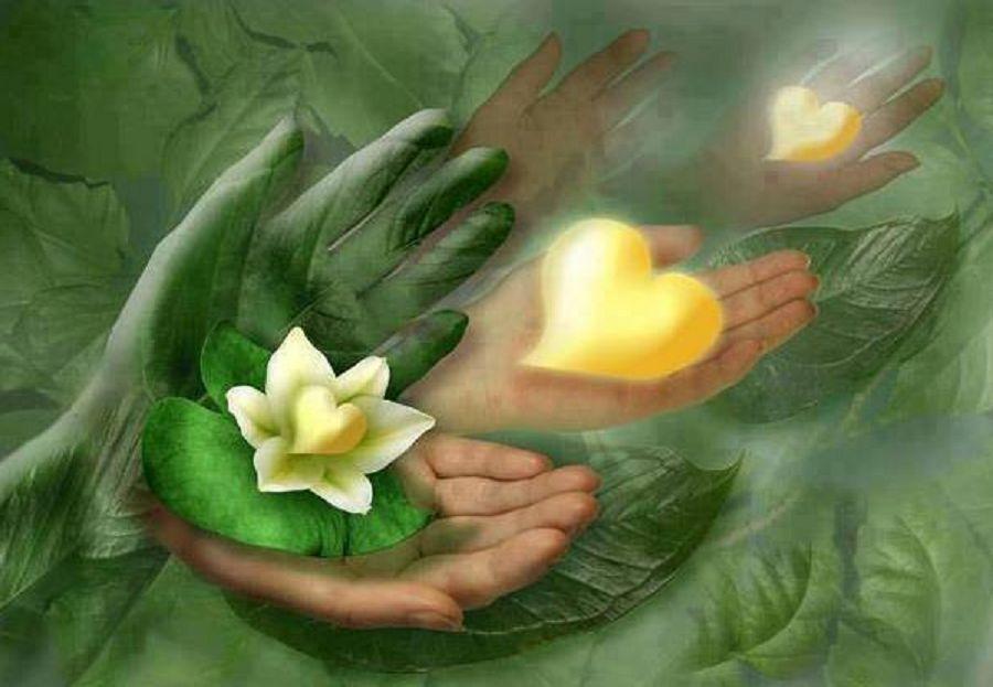 http://www.terrenouvelle.ca/wp-content/uploads/2012/04/Coupez-avec-le-pass%C3%A9.jpg