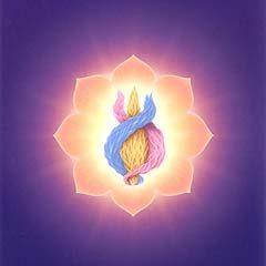 Lumière du Coeur