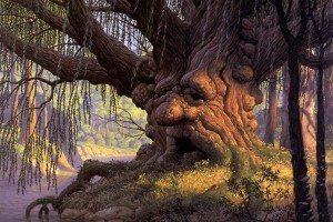Esprit de la Forêt